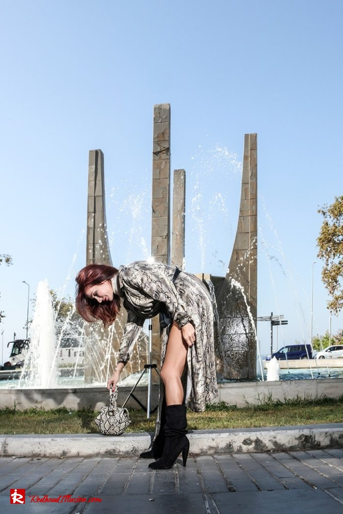 Redhead Illusion - Fashion Blog by Menia - Snake Print Dress 70's Style - Zara-02